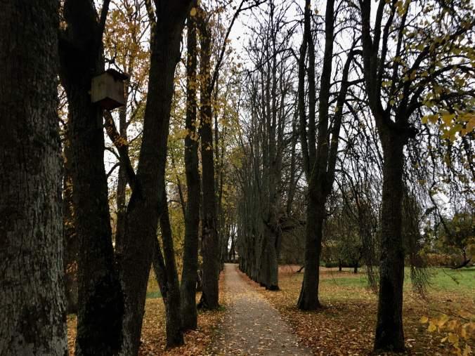 jaunmoku-park