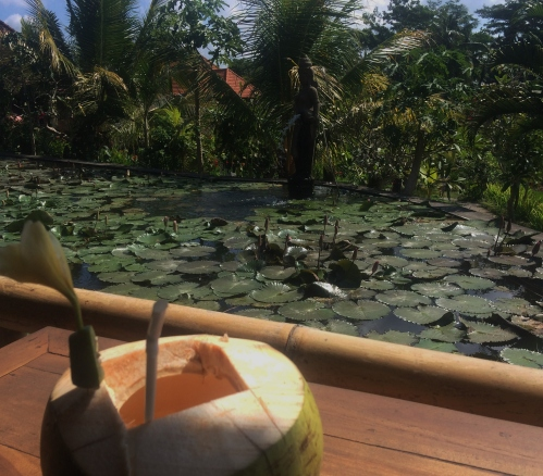 coconut-2016