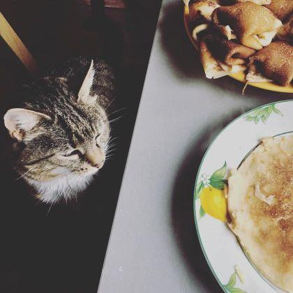 murka-pancakes